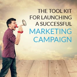 Tool-Kit-Successful-Marketing-Campaign.png