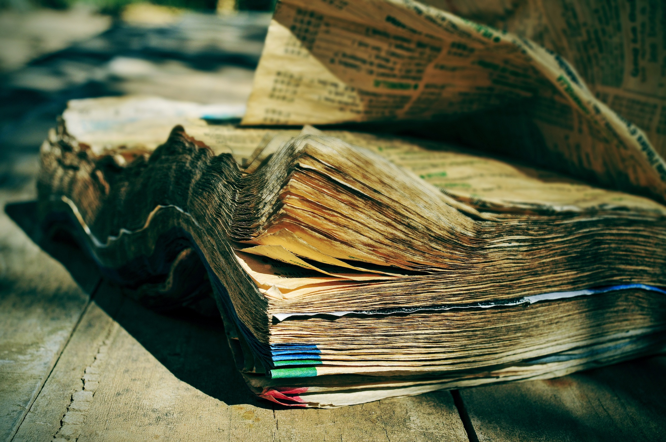 The yellow pages reign is OVER   Rhino Digital Media